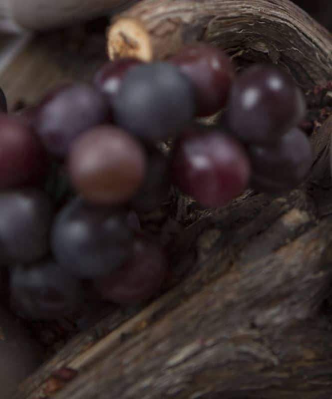 Traubenkernöl Trauben Taubenkerne